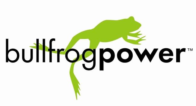 bullfrog logo.jpg